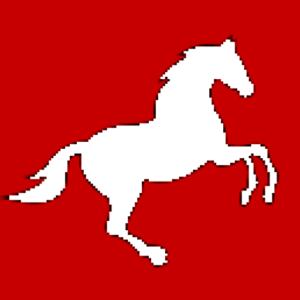 lovasok